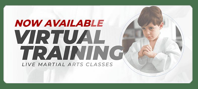 VIRTUALPOPUPSPARK.1.1, Sport Karate Academy in Evansville, IN